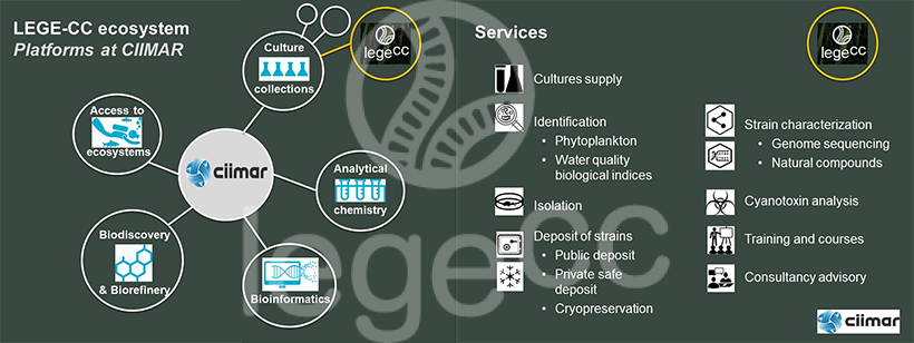 Lege - Overview